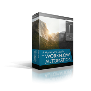 A Beginner's Guide to Workflow Automation