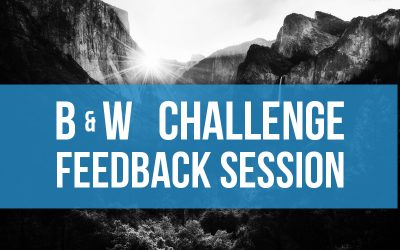 Black & White Feedback Session