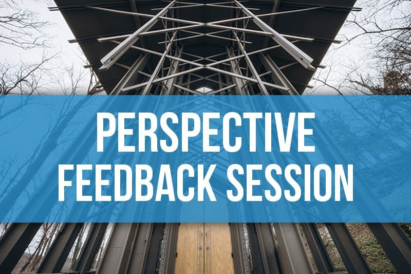 Perspective Challenge Feedback Session