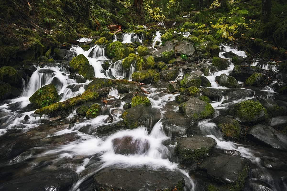 Sol Duc Falls (2)