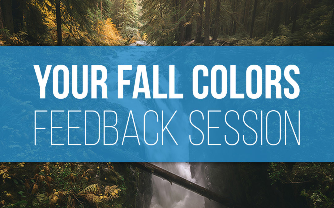 Your Fall Colors Feedback Session