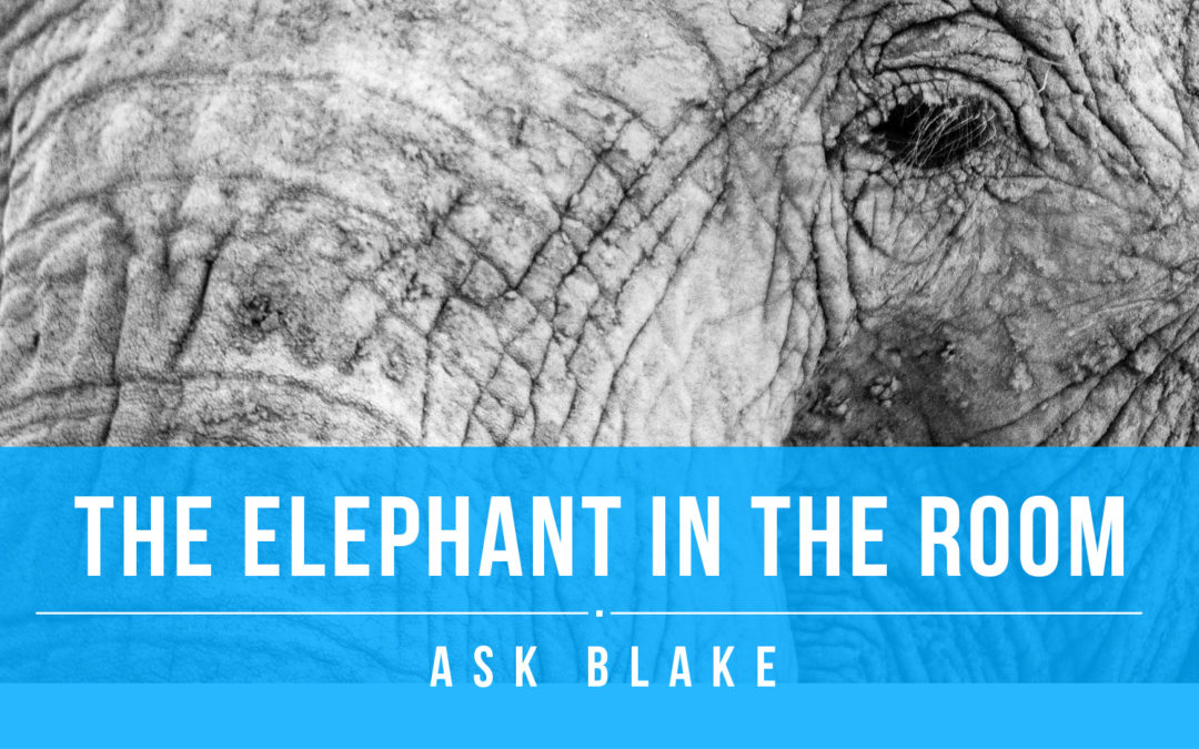 The Elephant in the room… or is it?