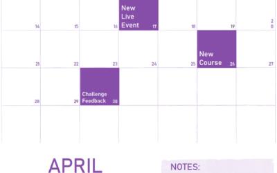 April 2019 updates for f.64 Elite