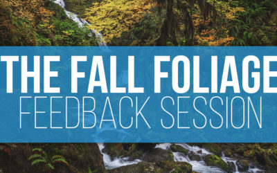 The Fall Foliage Challenge Feedback