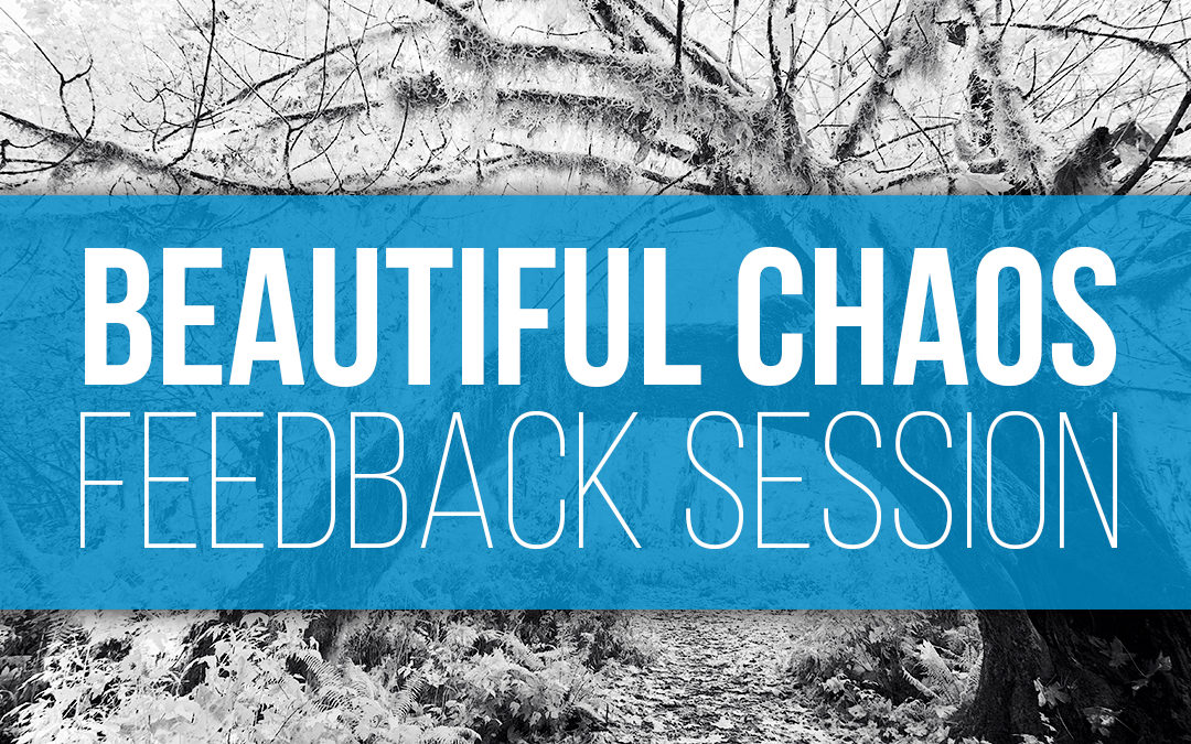 The Beautiful Chaos Challenge Feedback Session