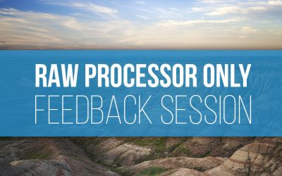 Raw Processor Only Feedback Session