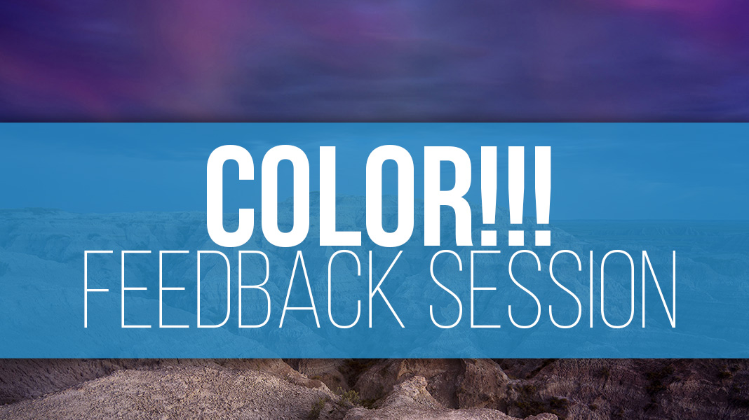 COLOR! Feedback Session