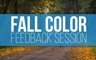 Fall Color Feedback Session 2020