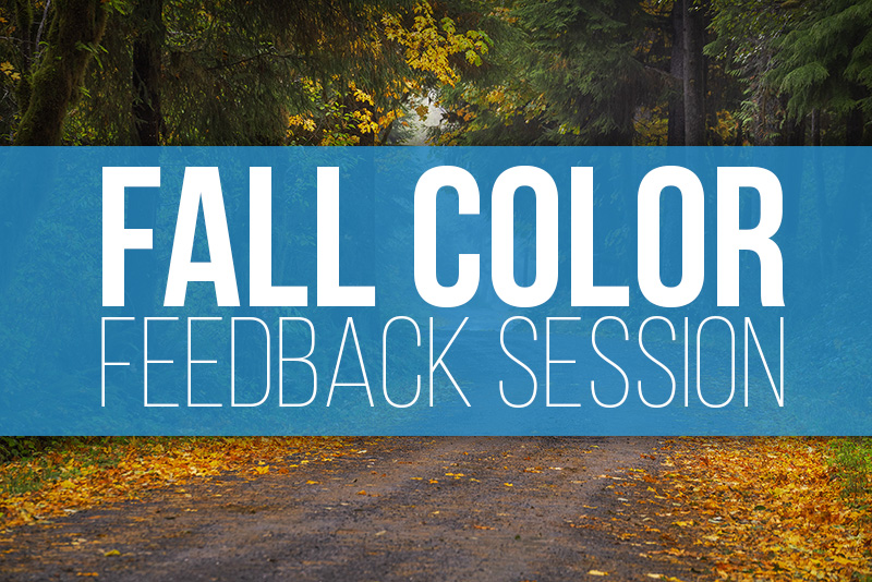 Fall Color Feedback Session 2020