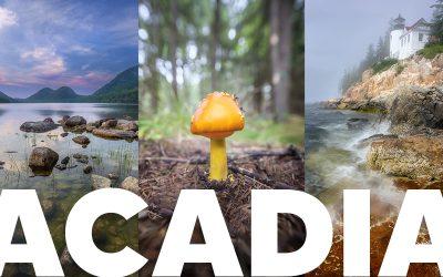 Acadia National Park Trip